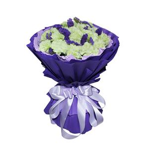 鲜花/听妈妈的话:19枝绿色康乃馨 包 装:粉紫色卷边纸内衬,紫色瓦