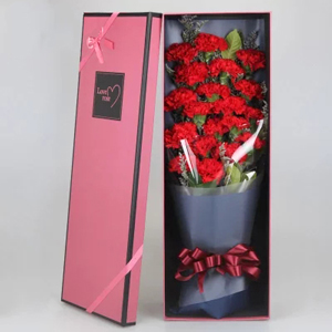 鲜花/感恩密码:19朵红康乃馨、绿叶情人草辅材 花 语:感激您为我