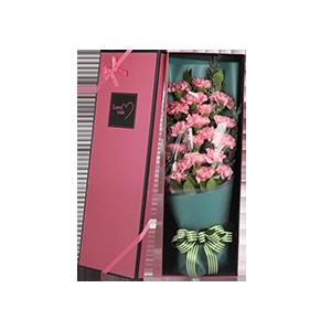鲜花/幸福绽放:19支粉色康乃馨、绿叶情人草辅材 花 语:真诚守护