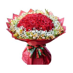 鲜花/恋香久久:66枝红玫瑰,水仙百合围绕 包 装:红色皱纹纸圆形