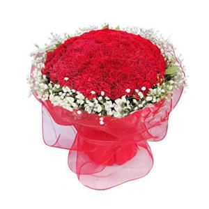 鲜花/福乐绵绵 :99枝红色康乃馨 包 装:红色网纱圆形精美包装。