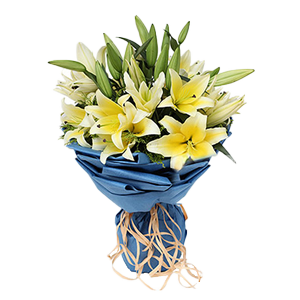 鲜花/珍惜你:9枝多头黄色香水百合 配材:黄英间插 花 语:珍惜