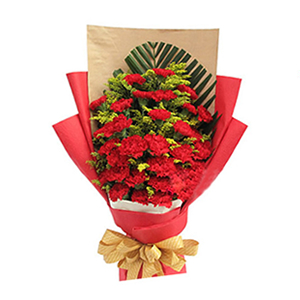 鲜花/浓浓祝福情:33枝红色康乃馨 配材:散尾叶垫底,黄英丰满 花