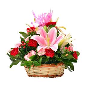鲜花/母爱深情:2枝粉百合,2枝白百合,10枝红色康乃馨,12枝花边