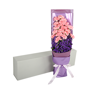 鲜花/温柔的笑脸:19枝粉色康乃馨+勿忘我点缀 花 语:温柔的关怀,