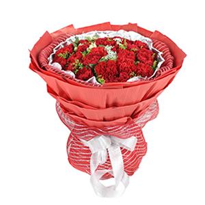鲜花/母爱至上:33枝红色康乃馨 配材:水仙百合、蕾丝、黄莺,绿叶间