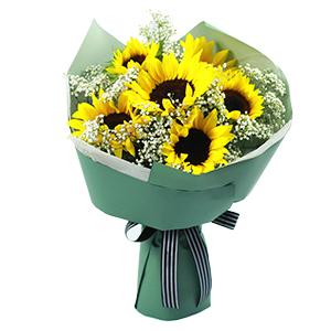 鲜花/心中永远的太阳:6枝精品向日葵+满天星 花 语:您像阳光一样照拂我