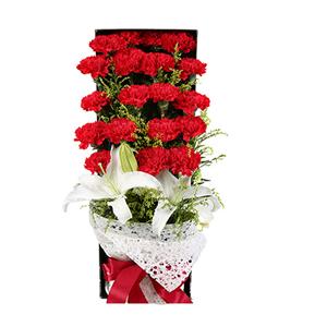 鲜花/妈妈辛苦了:19枝红色康乃馨+两枝百合 花 语:妈妈您辛苦了,