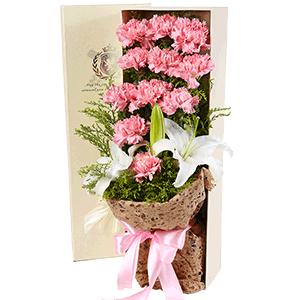 鲜花/妈妈的温柔:11枝粉色康乃馨+白百合 花 语:最好的爱