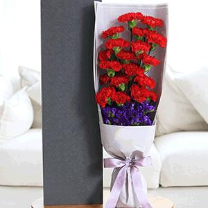 鲜花/润物春雨:19枝红色康乃馨+高级配草 花 语:母爱如润物春雨