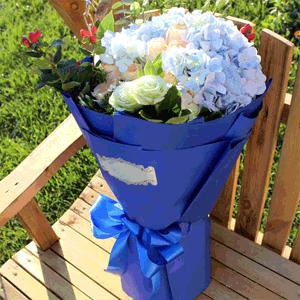 鲜花/天作之合:21枝混搭玫瑰+蓝色绣球 花 语: