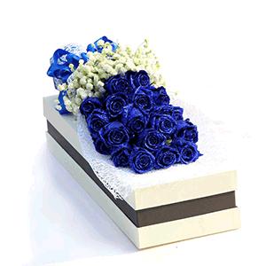 鲜花/生如夏花:21枝蓝色妖姬 高级配草 花 语:我还是很喜欢你,