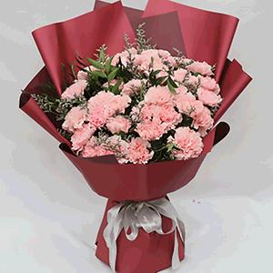 鲜花/温情:33枝粉色康乃馨+高级配草 花 语:她在,为你遮风